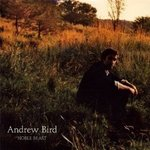 Noble Beast - Andrew Bird -- 10/05/09