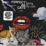 Perfect as Cats - Compilation -- 18/02/09